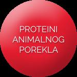 proteini_animalnog_porekla